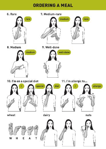 how to teach deaf dogs hand signals